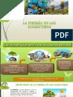 LA ENERGIA EN LOS ECOSISTEMAS (2).pdf