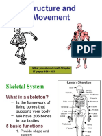 Skeletal and Muscle Systems