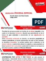 procesal divisorio.pdf