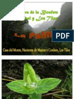 Marcos y Cordero(LA PALMA)