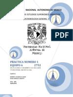 2752-p1p- Protozoarios y Helmintos de Vida Libre
