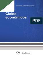 [8004 - 25511]Book Ciclos Economicos