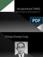 357221156-Acupuntura-Tung.pdf