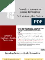 Slide Conc Esc Gest Dem (2)