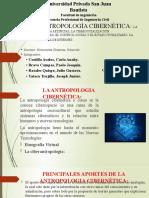 ANTROPOLOGIA CIBERNETICA