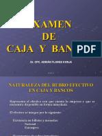 27.- EXAMEN CAJA Y BANCOS