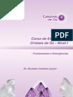 Apostila_do_curso_de_essências_Cristais_de_Oz_-_Nível_I_-_EAD.pdf