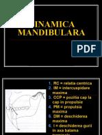 Dinamica mandibulara curs
