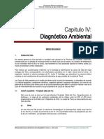 Capítulo 04 Diagnóstico Ambiental