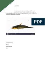 PREPARACIÓN  DE ENLATADO VENECIA.docx