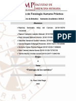 INFORME 4-GRUPO 6- FISIOLOGÍA DE LOS SENTIDOS -FINAL