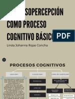 Actividad 5 LA SENSOPERCEPCION COMO PROCESO COGNITIVO BASICO