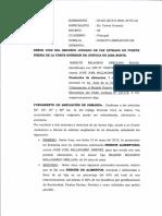 AMPLIACION DE DEMANDA M.pdf
