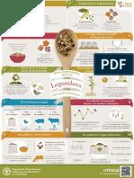 legumbres y leguminosas.pdf