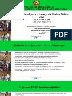 IVª PNAM versao de 24 de JUNHO FInal  PP - CC REAL - Copy