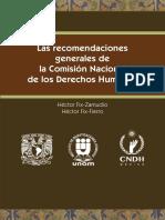 Recomendaciones generales de la omision nacional de derechos humanos