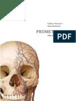 Cabeça, Pescoço e Neuroanatomia PROMETHEUS. Atlas de Anatomia