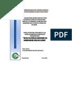 METODOLOGIA INTEGRADORA II[1]