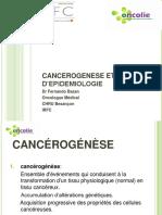 1-BAZAN-Fernando-CANCEROGENESE-EPIDEMIO-2014.pdf