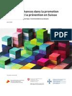 10. Rapport Égalité des chances dans la promotion de la santé