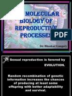 Molecular Biology of Reproductive Processes