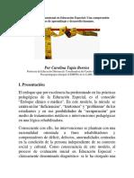 Evaluación Multidimensional en Educación Especial, c. tapia (2013)