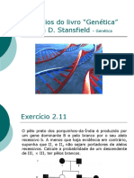 primeiro_miniteste_pratico_st_2.11.pdf