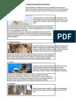 Las 10 principales especies en peligro de extinción.docx