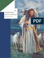 Princípio de liderança.pdf