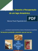 Impacto e Recuperação de um Ecossistema Amazônico - Lago Batata