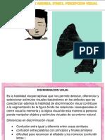 CUARTAD FICHAS PERCEPCION