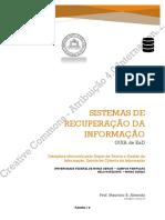 GUIA-SRI-corrigido17-08-20.pdf