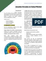 CT06 Determinantes sociales en salud mental