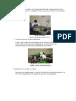 BETA-PRACTICA-09-imprimir