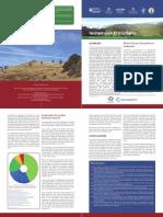 eea_guatemala_policy_brief