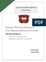 OB individual assignment final.pdf