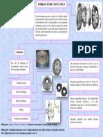 Luctuala_Fatima_Deber_I_Embrague_Seco_PDF