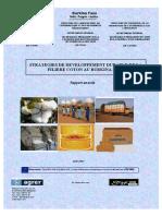 rapportstrategie_coton_amende_20_08.pdf