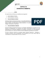 EEIA-CAPITULO 3 DIAGNOSTICO AMBIENTAL