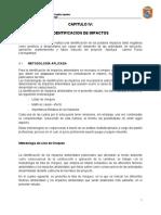 EEIA-CAPITULO 4 IDENTIFICACION DE IMPACTOS