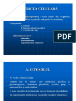 C07_citoscheletul
