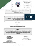 FORMULAIRE DE SOUMISSION CEI DOUALA. 2.docx