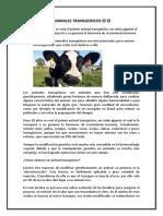 ANIMALES TRANSGENICOS.docx