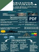 infografia proyecto final