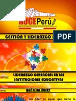 LIDERAZGO GERENCIAL EN LAS INSTITUCIONES EDUCATIVAS .pdf