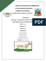 Semianrio-2.docx