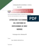 Informe Antocianinas[1]
