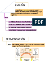 11.5 Fermentación.pdf