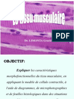 Tissue musculaire.pdf