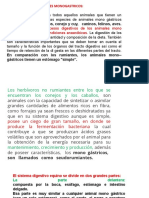3ra-CLASE-ALIMENTACIÓN-DE-MONOGASTRICOS-F.D.
